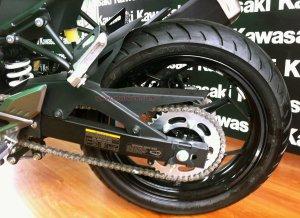 Kawasaki RR250 Mono ban belakang
