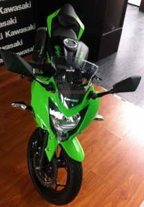 Kawasaki RR250 Mono Depan atas