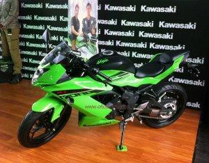 Kawasaki RR250 Mono kiri