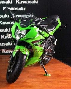 Kawasaki RR250 Mono